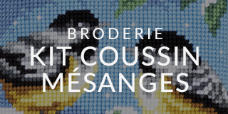 Broderie kit mésange